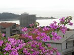 KLIKNI: Pronajímatelé apartmanu - mìsto Makarska